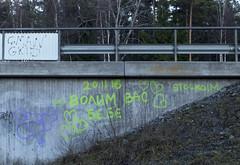 Dyslexic Graffiti Artist (Steffe) Tags: graffiti dyslexic betong bro handen haninge sweden