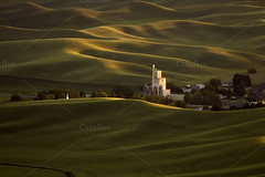 Rolling Wheat Fields (Effecs) Tags: wow washingtonstate usa photo distant grain elevator amidst rolling hills sunset palouse