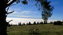 What A Day (collideous) Tags: fall autumn gravel grinding bike ride 29102016 fog alps blue sky