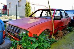 ford escort (riccardo nassisi) Tags: auto abbandonata abandoned rust rusty relitto rottame ruggine ruins rottami scrap scrapyard epave piacenza pc fiat officina decay urbex