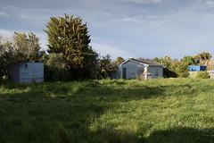 20161116_0028_7D2-24 The old croquet club (johnstewartnz) Tags: canon canonapsc apsc eos 100canon unlimitedphotos yabbadabbadoo 2470mm 2470 7d2 7dmarkii newbrighton newzealand croquetclub