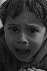 Valentino Rostros#8 (Alvimann) Tags: alvimann valentino hijo son varon babyboy toddler boy toddlerboy nio nios rostro rostros cara caras expresion expression expresivo expressive express expressions expresiones expresar