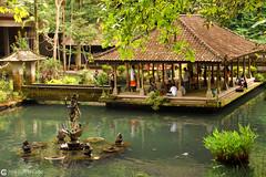 10-10-24 Indonesia (131) Bali R01 (Nikobo3) Tags: asia indonesia bali selva jungla templos paisajes nikon nikond200 d200 nikondx182003556vr nikobo josgarcacobo flickrtravelaward ngc culturas arquitectura architecture naturaleza