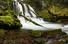 Lower Panther Creek Falls (M3tr1c) Tags: panther creek falls waterfall river wet flow rush rock moss rocks logs trees waterfalls columbia gorge gifford pinchot national forest landscape