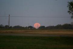 DSC00478 (carrie_20001jf) Tags: supermoon moon morning night astronomy texas sky texassky supermoon2016 2016 skyporn nature texasnature