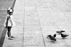 La nia y las palomas (carnuzo) Tags: leica monochrom elmarit 90mm