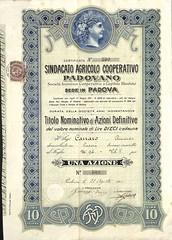SINDACATO AGRICOLO COOPERATIVO PADOVANO (scripofilia) Tags: 1912 agricolo azioni cooperativo padovano sindacato