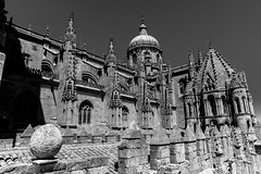 top catedral de salamanca black & white (phooneenix) Tags: cathedral catedral salamanca