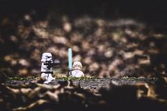 La sentinelle (shoube) Tags: 50d 100mm 100mmmacro canon lego starwars afol figurine stormtrooper brick lukeskywalker luke skywalker vosges lorraine 88 dommartinsurvraine
