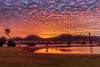 Sunrise Over Gila Mountain Range (http://fineartamerica.com/profiles/robert-bales.ht) Tags: arizona foothills forupload freshwatersunsetorrise haybales people photo places projects scenic states sunrisesunset sunset sunrise golden red lake pond yuma palmtree weeds reflection silhouette sensational spectacular awesome magnificent peaceful serene surreal sublime spiritual inspiring inspirational evening relaxing unitedstates panoramic southwest trees twilight wow dramatic emotion environment desert sunrays sky yellow nature outdoor water colorful sun dawn horizontal tranquil exotic orange mountain robertbales gilamountains