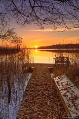 Autumn Light (Dennis Siebert) Tags: 5936839 autumn bank clouds dargow deutschland europa europe fall germany herbst herzogtumlauenburg himmel natur outdoor schaalsee schleswigholstein seedorf sky sonnenaufgang steg sunrise sunup wolken biosphärenreservatschaalsee