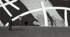Fantasie aretine (fani.francesco) Tags: muro wall foto kodak tmax ia fotografia toscana murales thewall 100asa analogica retinette arezzo dipinto toscan
