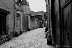 Le Vieux Mans (Rmi Gilein) Tags: france mans lemans ville vieux historique sarthe paysdeloire