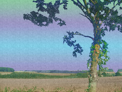 Tree and texture - Playing with layers (hazelshelton63) Tags: artsandcrafts