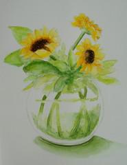 Vase with sunflowers, by Mnica - DSC00632 (Dona Mincia) Tags: stilllife flower art glass beauty vidro watercolor painting paper arte flor study sunflower vase beleza vaso pintura belo aquarela girassol