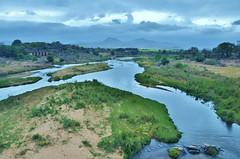 Crocodile River (South Africa) (stevelamb007) Tags: africa morning clouds river landscape southafrica nikon swaziland krugernationalpark mpumalanga kruger 18200mm d90 crocodileriver stevelamb malanlanegate