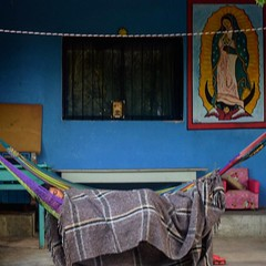 Day 203. Through another small town this morning. Woke up to a horse chomping on grass beside my tent. People waiting for the bus stared at me. And this kid looking totally at peace. #TheWorldWalk #travel #Mexico #twwphotos