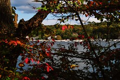 The village of Cold Spring Harbor, Long Island, New York (Paul Anthony Moore) Tags: autumn trees newyork fall leaves longisland coldspringharbor longislandnorthshore
