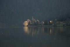 Poésie d'automne (Gisou68Fr) Tags: trees light lake france mountains water forest montagne dark eau lumière lac arbres sombre reflexions reflets forêt vosges longemer xonruptlongemer canoneos650d efs18135mmf3556isstm