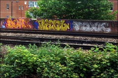 Dowt / Nigel / Toxic (Alex Ellison) Tags: urban toxic graffiti boobs railway graff nigel southlondon trackside tox tnf dfn dowt dowta