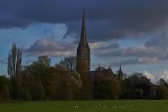 1353-11L (Lozarithm) Tags: salisbury wilts landscape cathedrals pentax zoom k50 1855 smcpda1855mmf3556alii blip justpentax