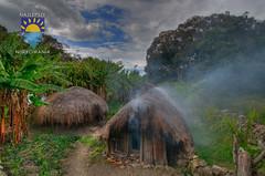 nurkowanie-travel-pl-110.jpg (www.nurkowanie.travel.pl) Tags: indonesia places papua baliem