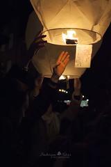 Message au monde (TeF46) Tags: message noel amour lampion espoir