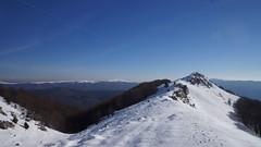La orizont muntii Tataru