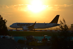 Tiger VH-XUH sunset departure (Simon_sees) Tags: travel sunset vacation sun holiday yellow plane fly flying aircraft jet airline airbus syd tigerair