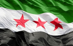 The flag of Syrian   (    ) Tags: flag syria