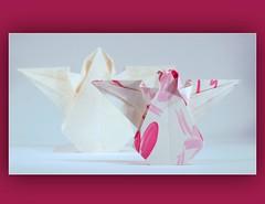 origami angel (steffi's) Tags: angel paper origami diagram folded engel papier papercraft anleitung falten origamiangel faltengel origamiengel