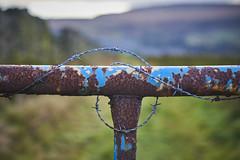 (Hey hey JBA) Tags: gate old rust loop wire barbedwire barbed bokeh pennines westyorkshire uk d750 50mm captureone abstract