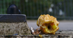 How do you like them apples? (orellgarten) Tags: apples apfel berlin brcke bridge food obst fruit essen herbst fall autumn kriebsch stil