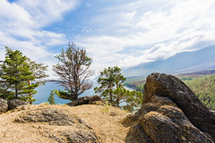 In the evening on top of a hill (Ivanov Andrey) Tags: lake water rock slope shore stone larch pinewood sanddune bay sky clouds horizon sun evening blue skyblue green stem branch trunk bark treeroot coast coastline landscape shade wildlife travel tourism summer north lakebaikal russia