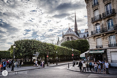 A view of the Notre Dame de Paris from the Pont Saint-Louis (doctor.calavera) Tags: autumn building bridge esmeralda street landmark cite city cityscape saint notre pont dame cafe editorial urban parisian paris louis seine caphedral island architecture de outdoor europe france tourism