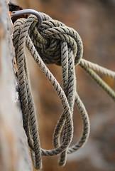 Marine Rope (YellowSingle ) Tags: marine rope knot harbor socoa atlantic ocean nikon d3 bokeh