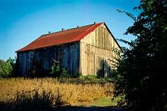 Woodford Barn (Neil Kesterson) Tags: 35mm bluegrass kentucky kodak lexington vision50d vitomaticiib voigtlander film filmscan vision3