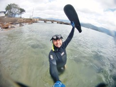GOPR5892 (ambrogi_taubate) Tags: naturezaselvagem marinha mergulhando ubatuba sp brasil naturezamarinha fantstica apneia 10m setembro primavera 2016