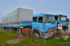 iveco 190.36 turbotech (riccardo nassisi) Tags: auto camion abbandonato abandoned wreck wrecked rust rusty relitto rottame ruggine ruins scrap scrapyard epave renault berliet scania iveco 140 141 v8 6x2 tr 350 190 35 36 turbo turbotech