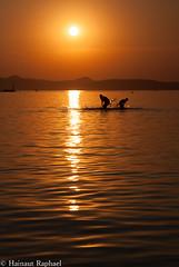 beautiful light (raphael hainaut) Tags: light sun nature beautifull