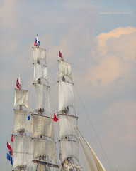 The Fleet has arrived (farflungistan) Tags: holland netherlands amsterdam nederland tallships ij ijmeer westerdok sailamsterdam sail2015