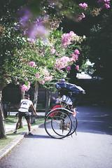 flickr_150819_01 (est150311) Tags: japan sony nara a900