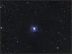 Image42_clone_3x12x240+14x240_LRGB_PS_NI35pc-k (Rolembeek) Tags: iris astro nebula deepsky ngc7023 qhy9 qhy9m asrophoto