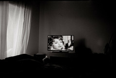 a tribute to lee friedlander (nicholas dominic talvola) Tags: film 35mmsummiluxpreasph leicam4blackpaint tributetolee