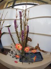 Japanese flower arrangement by Misako Lachapelle of the Koryu School (nano.maus) Tags: fisheye lauritzengardens japaneseflowerarrangement omahabotanicalsociety japaneseambiencefestival