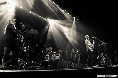 Hozier Live at Vector Arena, Auckland NZ |  Amanda Ratcliffe (amandashootsbands) Tags: newzealand music concert forsale livemusic auckland stockphotos rhodes concertphotography musicphotographer musicphotography hozier livemusicphotography livemusicphotographer vectorarena concertphotographer