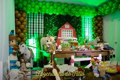 FAZENDINHA DO TULIO 2015 FINAL-18 (agencia2erres) Tags: aniversario 1 infantil festa ano fazenda fazendinha