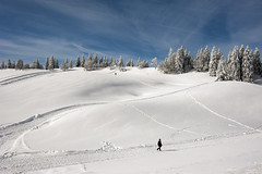 Fresh white snow, its all that we need ... No. 3108. (Izakigur) Tags: winter white snow topf25 switzerland flickr suisse swiss madonna topf300 virgin jura montypython neige myswitzerland tchaux nikond700 izakigur