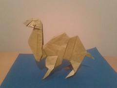 Camel - Fumiaki Kawahata (Boy -) Tags: origami camel camelo kawahata fumiaki