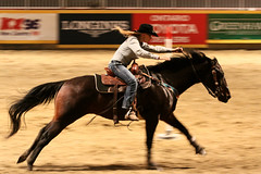 RAWF15 JSteadman 0114 (RoyalPhotographyTeam) Tags: sun royal rodeo 2015 rawf nov08